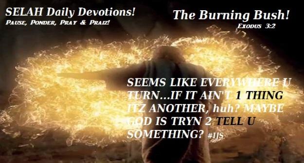 the-burning-bush-2